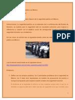 Los Retos de La Seguridad Pública en México