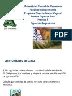 calculos de semilla de maiz.pdf