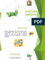 AUDITORIA-AMBIENTAL-resumen