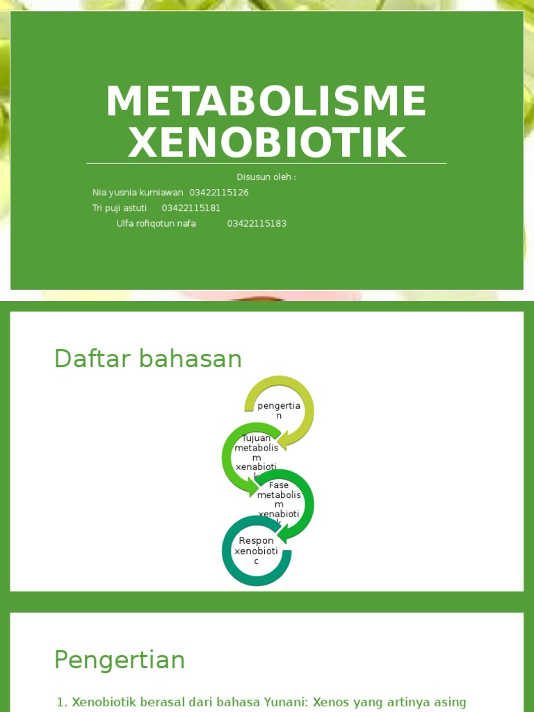 Metabolisme Xenobiotik Ii Autosaved