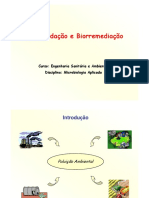 biorremediação solo doc