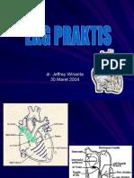 ECG Praktis Paramedik
