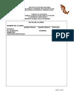 Copia de Formato de Reporte Global Vacio