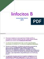 LINFOS B 2010