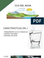 Ciclo Del Agua (1)