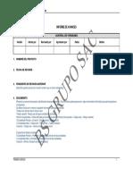 06-Informe-Avances
