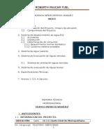 Memoria Hidrosanitaria Patricio Vasquez-correcion