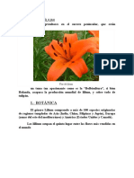 CULTIVO DEL LÍLIUM.docx