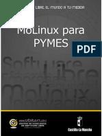 guia-bilib-molinux-pymes.pdf