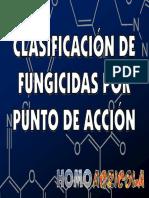 Fungicidas Clasificados Puntos Accion