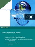 3149_9a Aula-Microbiologia Da Agua