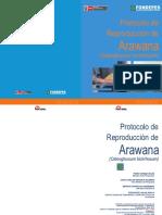 Manual Arawana