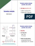 Vk Intermediary Metabolism Web