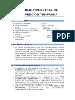 Informe Trimestral de Flor