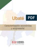 6233 Caracteriz Empresarial Ubate