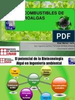 Biocombustibles de Microalgas