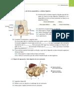 Ficha de preparação para o teste 1.pdf