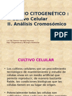 CITOGENETICA 3,4,5 (1)