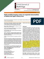 Multimodality Imaging on Kidney Kongenital