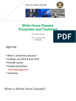 White Feces Disease, Prevention and Treatment