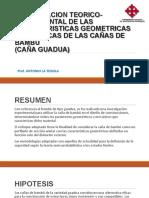 Caracteristicas Geometricas Mecanicas
