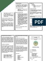 TRIPTICO N°1.pdf
