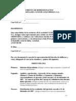 DOCUMENTO DE REPRESENTACION