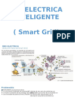 6 Red Electrica Inteligente (Smart Grid)