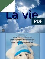 Lavieamie21