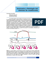 Capitulo_1_Anatomia_y_Fisiologia.pdf