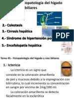 Tema 45 - Fisiopatología Del Hígado y Vías Biliares (Blanco y Negro)