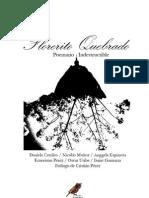 Florerito Quebrado-Poemario Indestructible