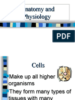 anatomyandphysiology-090906175047-phpapp02