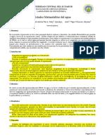 Informe Estados metaestables.docx