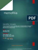 hemofilia 2014 (1)