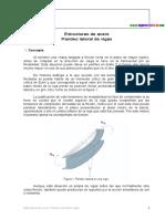 EA_PandeoLateral (2).docx