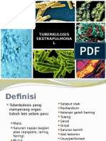 Tuberkulosis Ekstrapulmonal