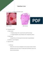 151079192-I-Nabothian-Cysts.pdf