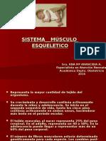 7 Sistema Músculo Esqueletico (1)