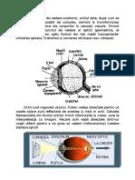Defecte oculare