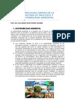 Tecnologias Limpias en La Industria de Procesos y Sostenibilidad Ambiental