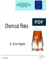 Chemical Risks (Papaleo) - English