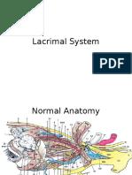 Lacrimal System