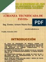 CRIANZA DE PAVOS TRUJILLO.pdf