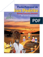 Programa San Pedrito 2010