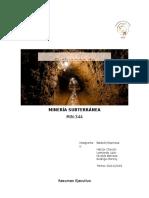 informe_inicial_tindividual.docx