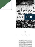 Aprendendo a pensar com a sociologia_cap10.pdf