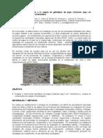Evaluación de tolerancia a la sequía en genotipos de papa (Solanum spp.) en condiciones de campo e invernadero (en Ecuador)
