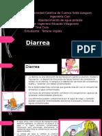 Diarrea Resumen