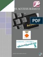 ManMSO2010 ACCESS BASICO.pdf